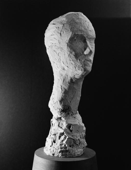 Bildnisstudie D, Gips, H. 58 cm, 2012